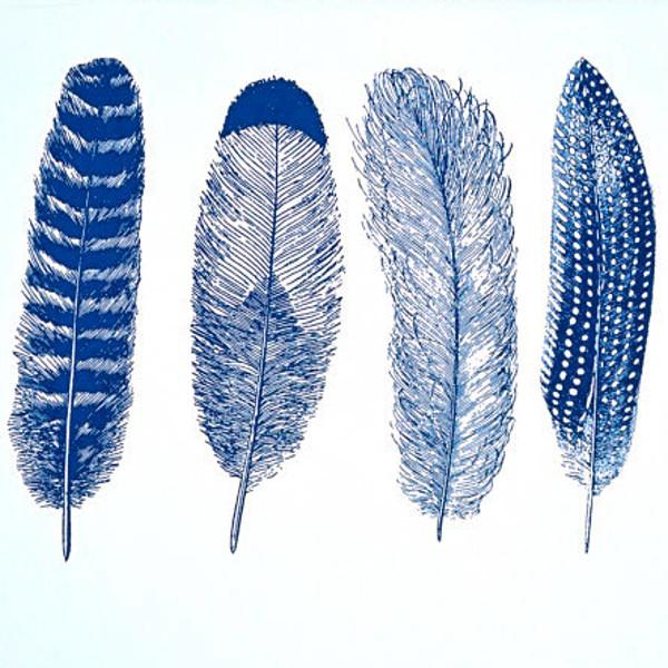 Feathers Decal Sheet